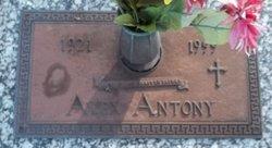 Alex Antony