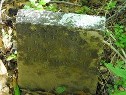 Andrew Jackson Drane