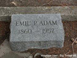 Emil P Adam