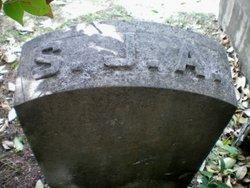 Samuel J Adams