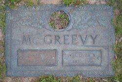 James E. McGreevy