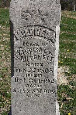 Mildred Ann <i>Lashbrook</i> Mitchell