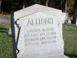 Elizabeth Ann <i>Cortleyou</i> Allison