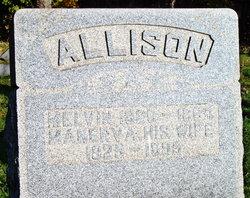 Manerva <i>Bowen</i> Allison