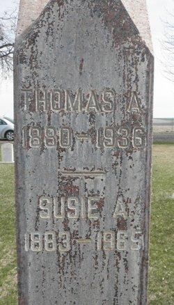 Thomas Alexander Bise