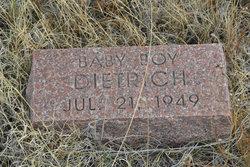 Baby Dietrich
