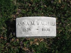 Anna Wachter