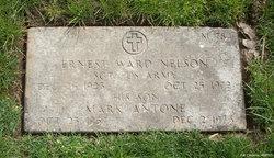 Ernest Ward Nelson