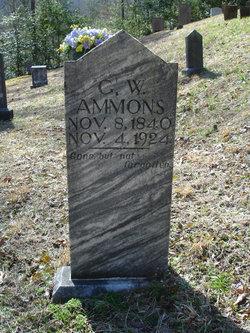 George W Ammons