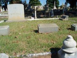 Alexander Stephens Mitchell
