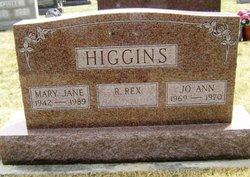 JoAnn Higgins