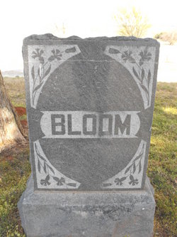 Henry Isaac Bloom