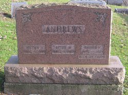 Elizabeth M. Bessie <i>Hinman</i> Andrews