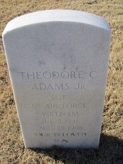 Sgt Theodore C Adams, Jr