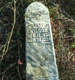 Mary J. <i>Simmons</i> Wilcox