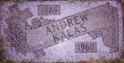 Andrew John Kalas