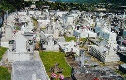 Cementerio Municipal #1