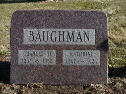 Charles D Baughman
