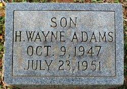 Hubert Wayne Adams