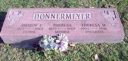 Theresa M Donnermeyer