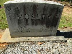 Anna J <i>Rhodes</i> Mosley