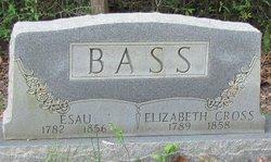Esau Whitstin Bass