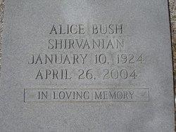Alice <i>Bush</i> Shirvanian