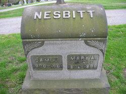 James Nesbitt