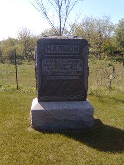 Mary E. <i>Horton</i> Harmon
