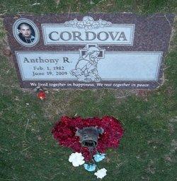 Anthony R Gordy Cordova