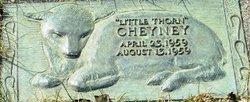 Thorn Cheyney, III