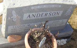 Joan A <i>Beecher</i> Anderson
