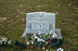 Ronald Mack Stedman