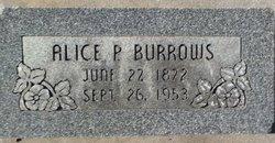 Alice Elizabeth <i>Harshman</i> Burrows