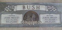 JoAnn <i>Hillen</i> Bush