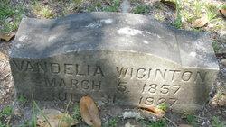 Vandelia <i>Drew</i> Wiginton