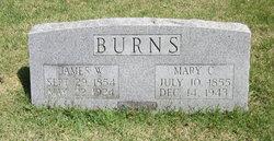 James William Burns