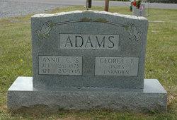 Annie C Adams