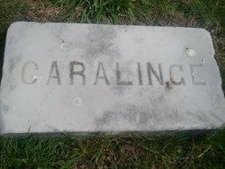 Rosa Carolinge