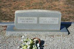 Sarah J Sallie <i>Lupo</i> Calhoun