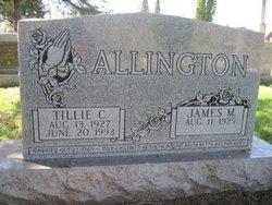 James M Allington