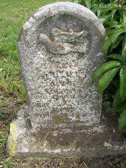 Lulu L. Aumiller