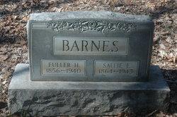 Sarah E. Sallie <i>Denny</i> Barnes