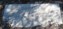 Jane E Barrett