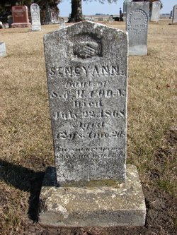 Sency Ann Coon