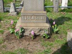 George Rosenshine