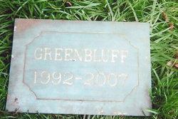 Greenbluff Bryant Dog