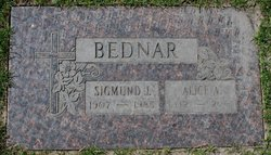 Sigmund J Bednar