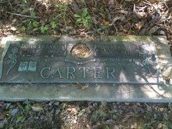 Mildred A. Carter