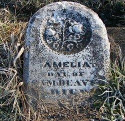 Amelia Beaver